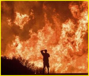 カリフォルニア 山火事 トーマス