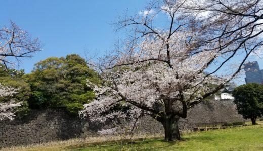 皇居・乾通りの桜 2019年一般公開の期間やアクセス方法は?混雑を動画で予想!