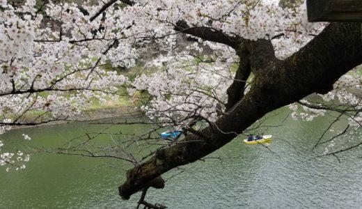 千鳥ヶ淵・皇居の桜|近隣駐車場の時間と料金は?おすすめや安い穴場も調査