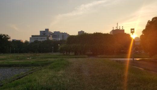 難波宮跡公園は無料で遊べる大阪の穴場スポットだった!駐車場・アクセスとバーベキューも調査