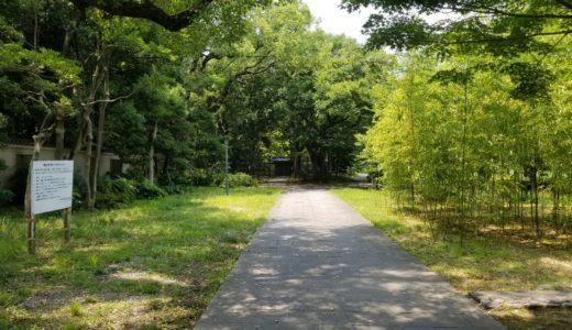 藤田邸跡公園は森林浴と桜や梅の花を無料で楽しめる穴場だった!アクセスと駐車場も調査